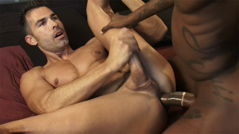 VIDEOS PORNO GAY GRATIS - EL TUBE DE